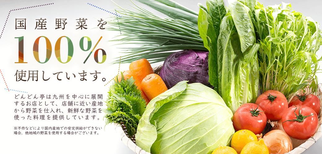 どんどん亭は国産野菜100%使用!
